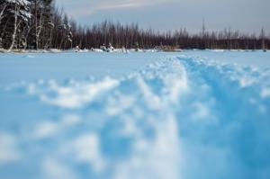 Snow path in winter time